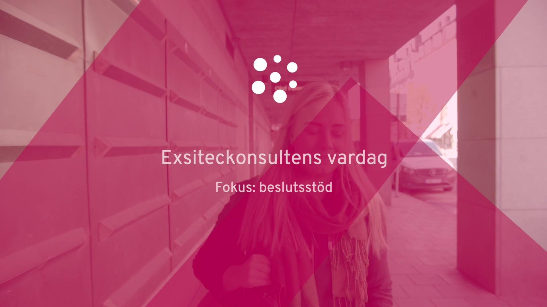 Exsiteckonsultens-vardag-beslutsstod