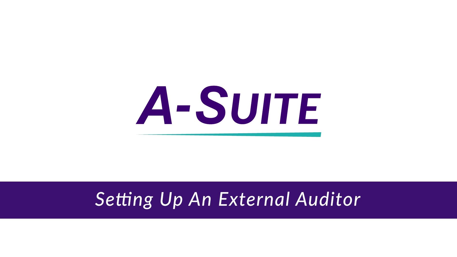 4.8_Set Up an External Auditor