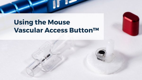 using-the-mouse-vab