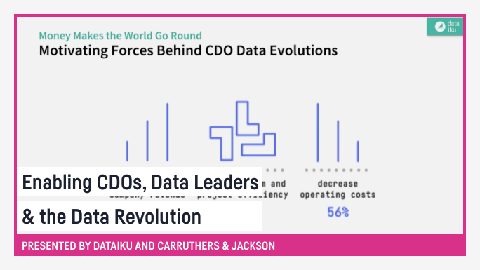 Enabling CDOs, Data Leaders & the Data Revolution