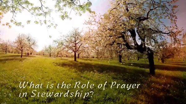 Prayer in Stewardship