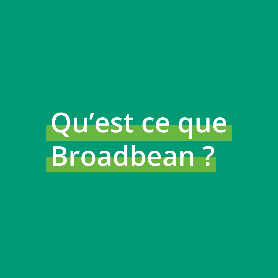1.Qu est-ce que Broadbean