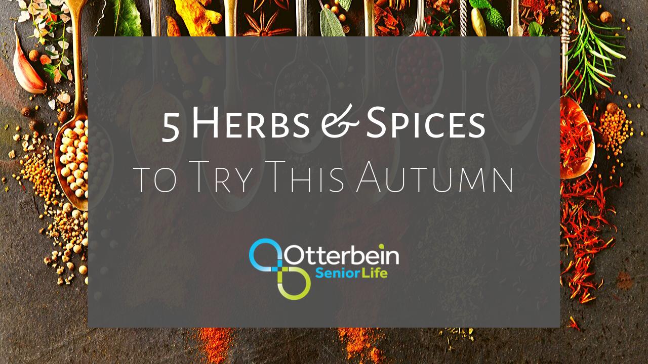 otterbein-5-autumn-herbs-spices
