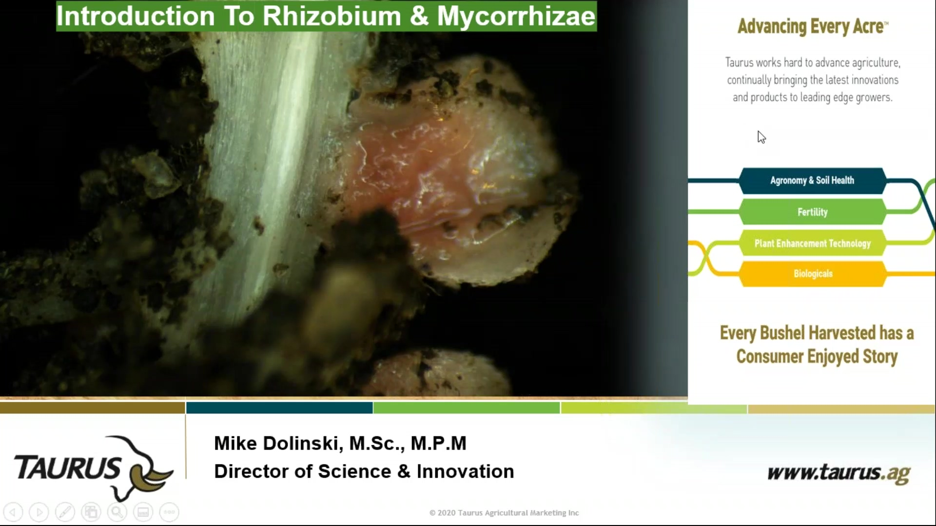 Introduction to Rhizobium & Mycorrhizae-Mike Dolinski- Feb 2020