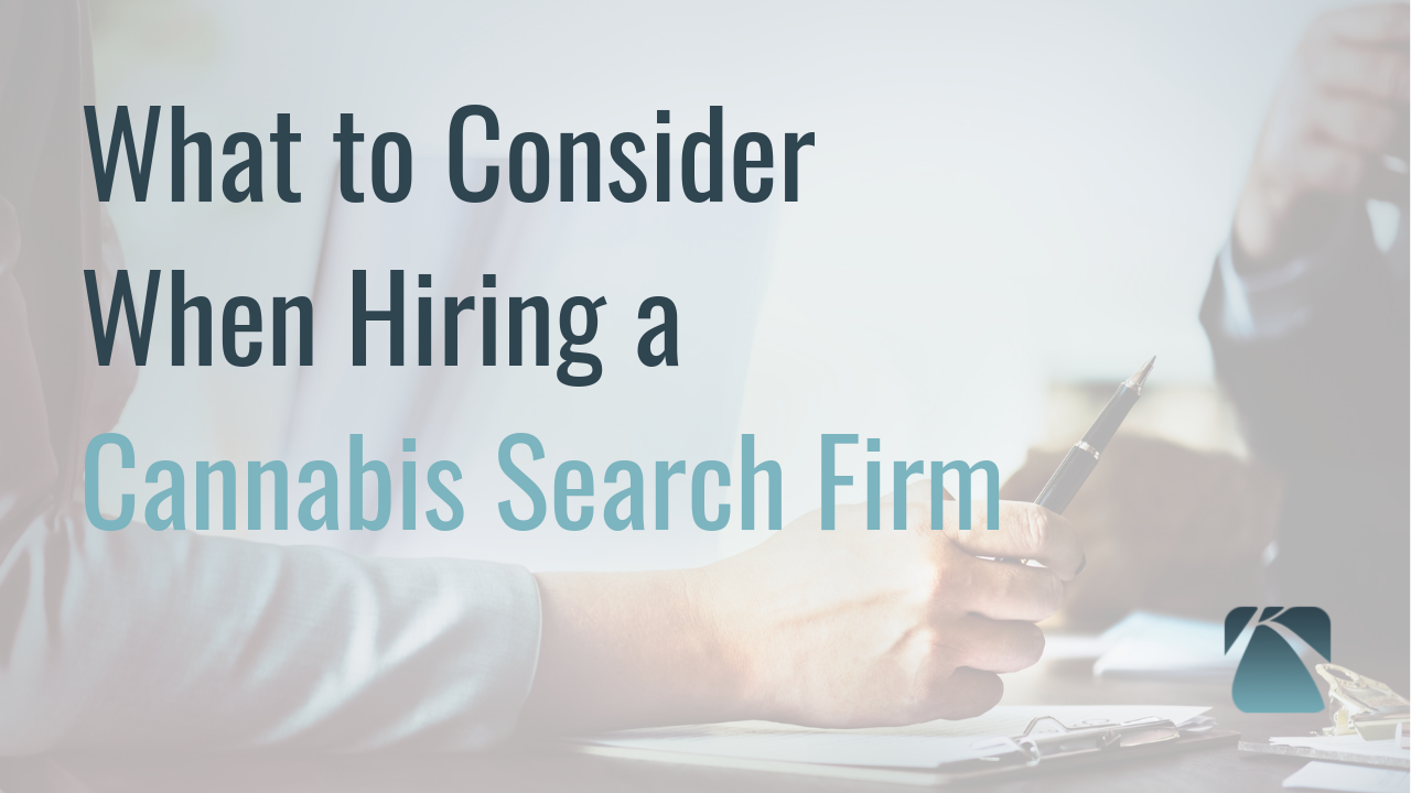 What to Consider When Hiring a Cannabis Search Firm