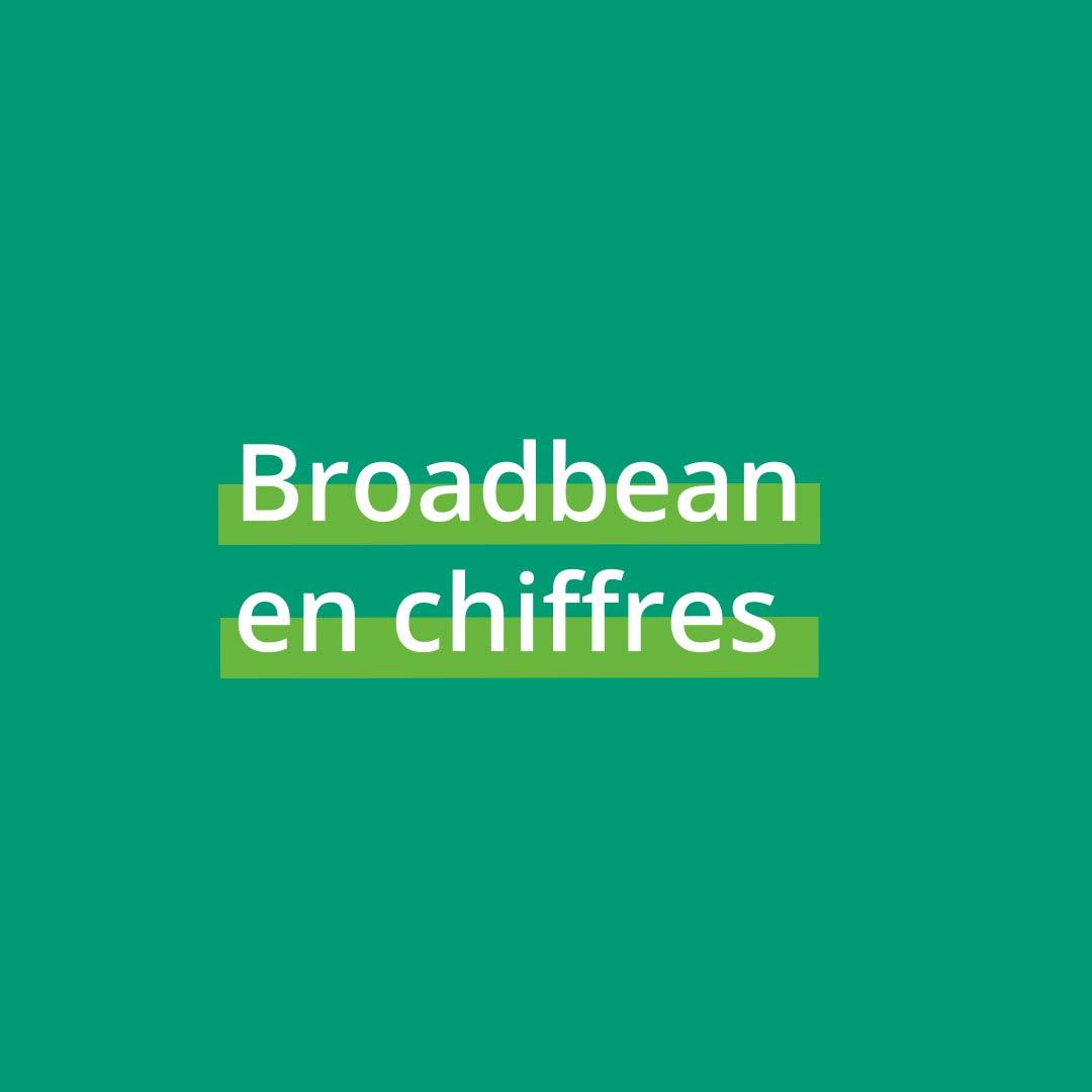 3.Broadbean en chiffres