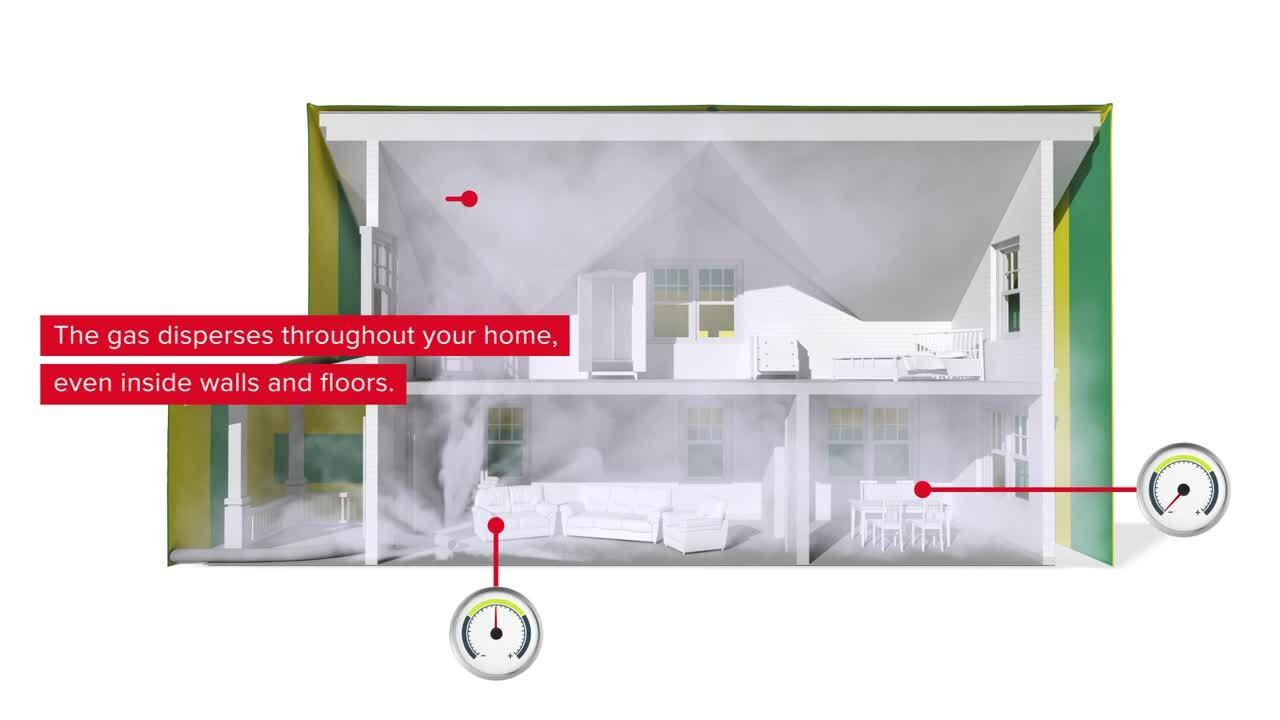 ZA - Rentokil - Video - Termite Tenting
