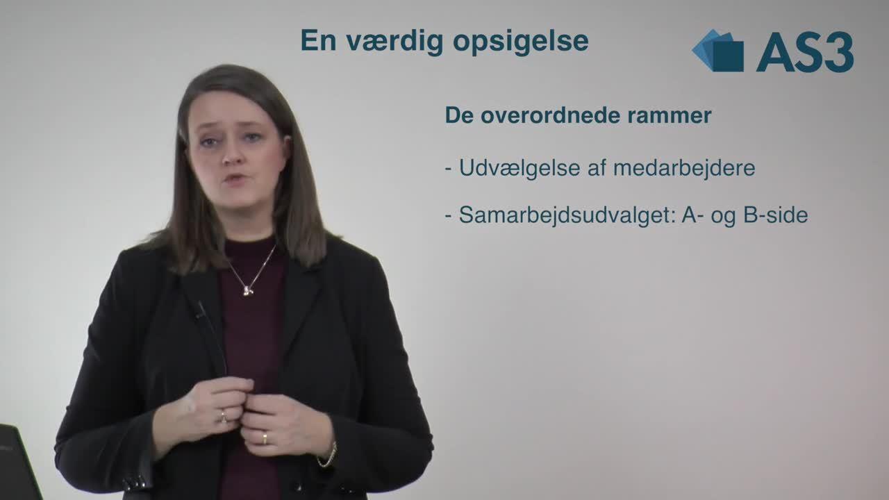 2-evo-de-overordnede-rammer-video