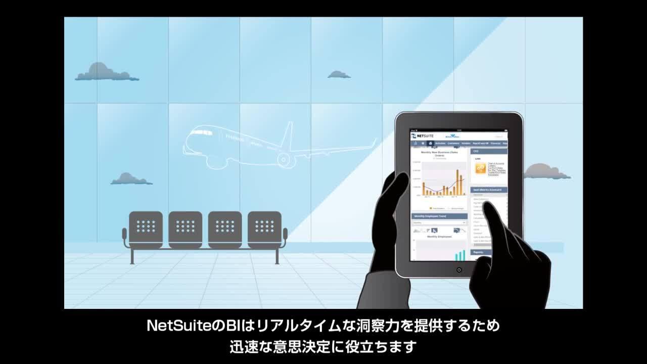 NetSuite CFO Role_rev2