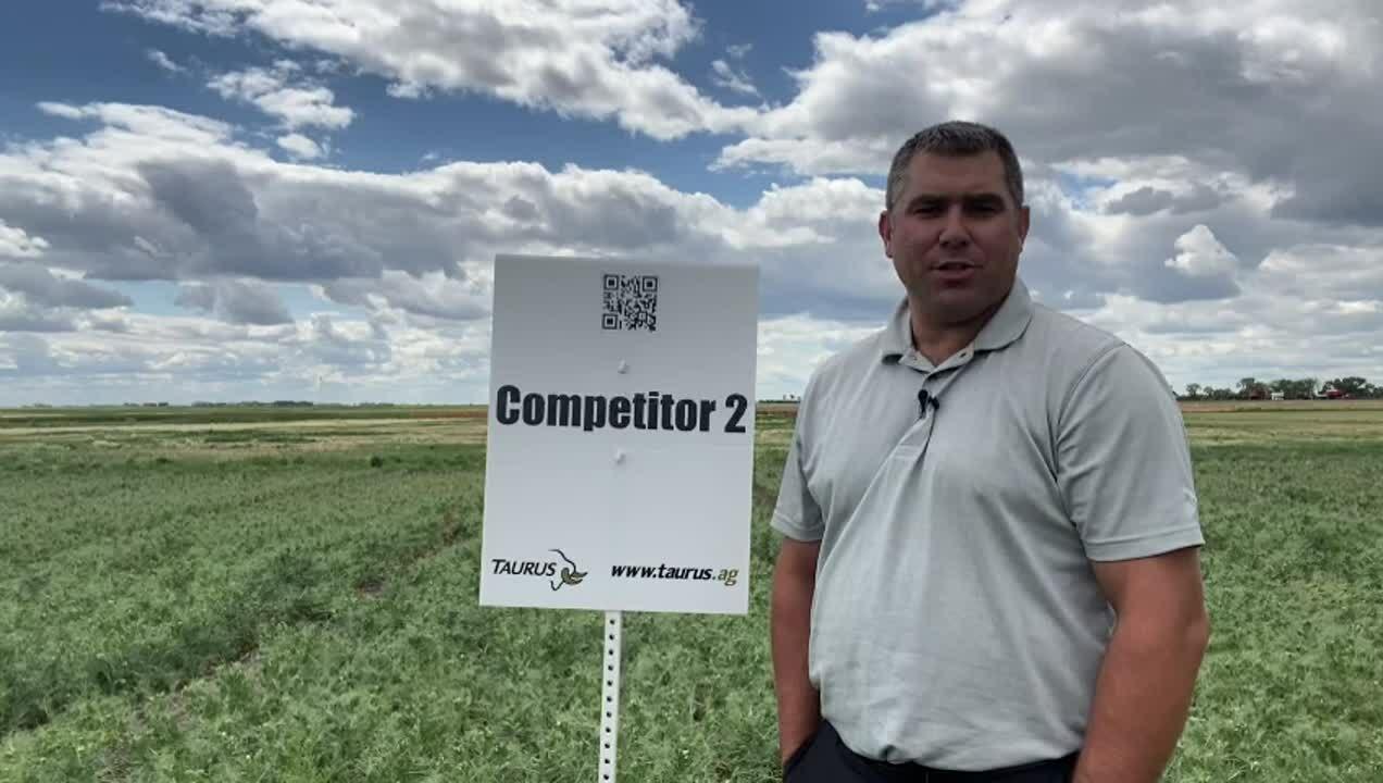 AIM 2021 DF competitor 2- plot 6