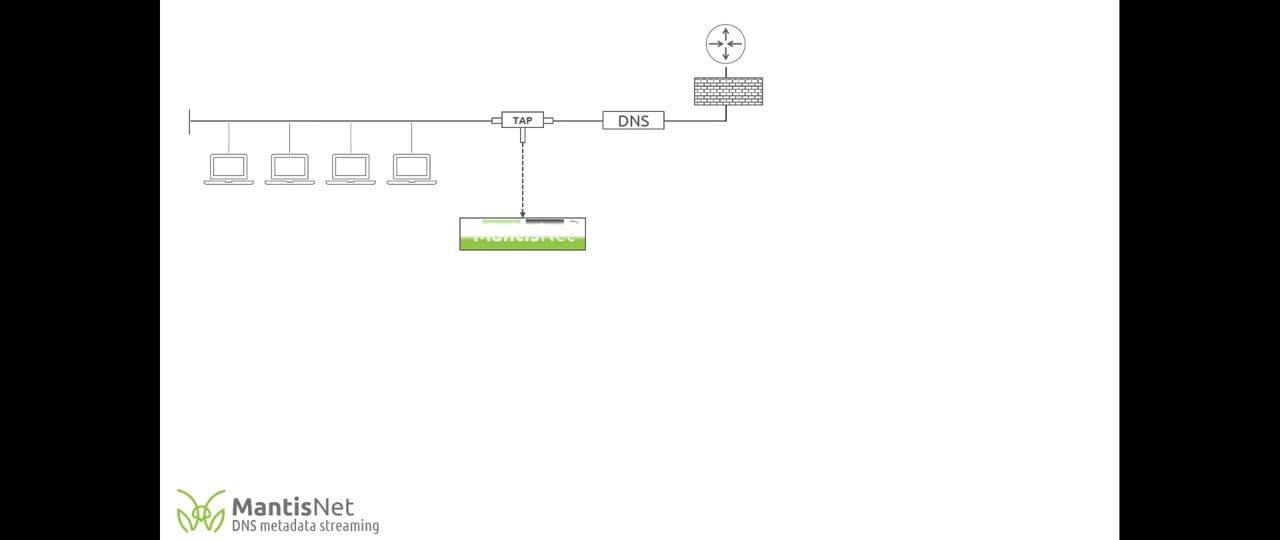 MantisNet | Streaming DNS Metadata Demo Video