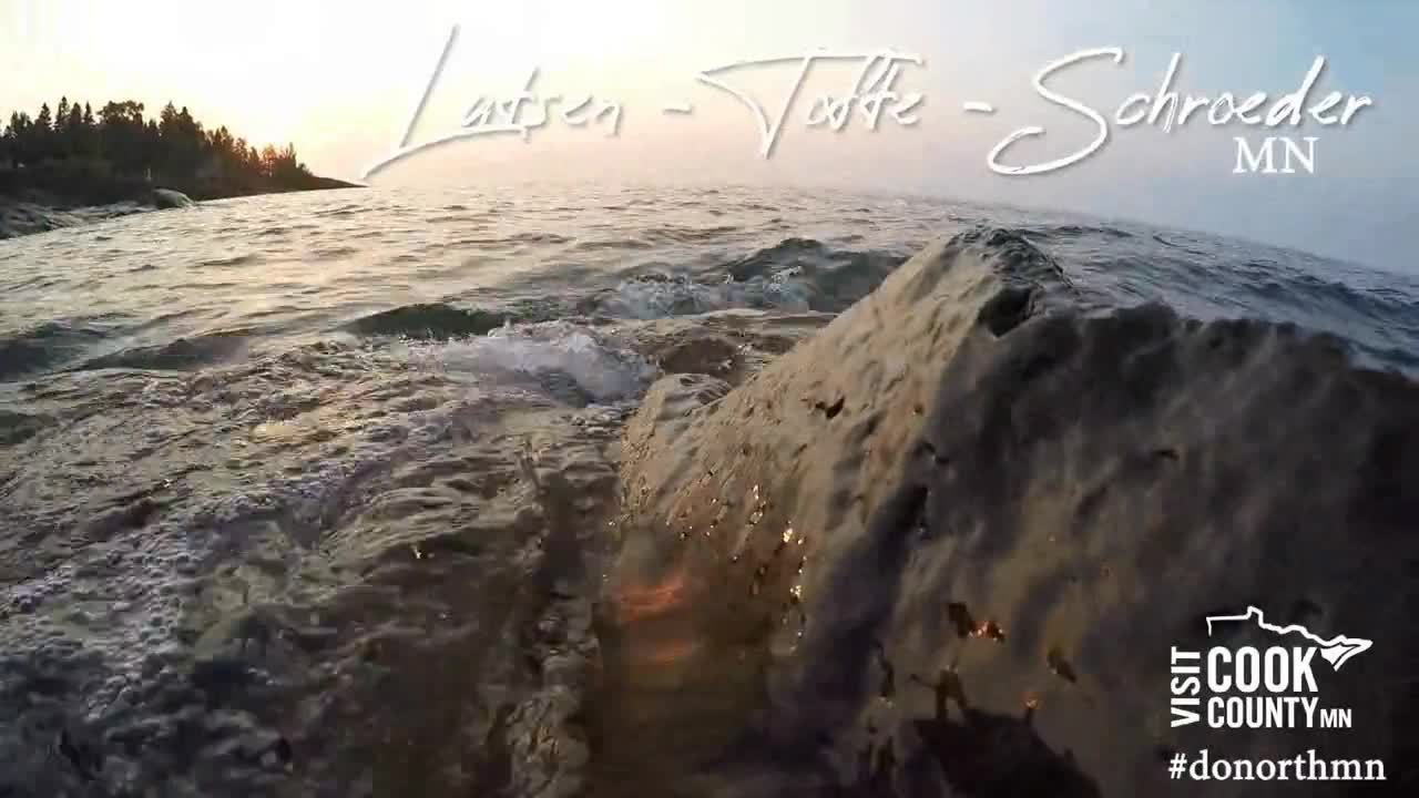 Zoom - Video - LTTA - Splash