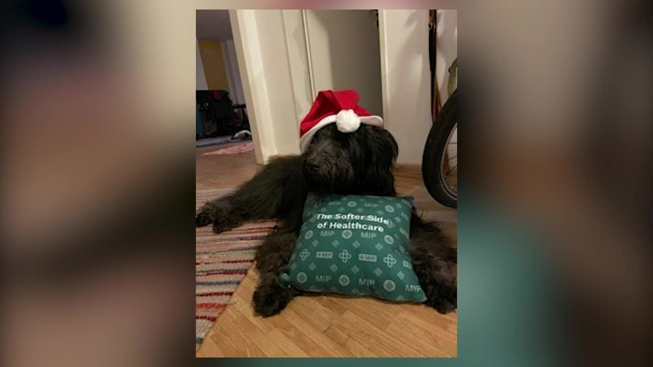 MIP - Christmas Cushion Challenge