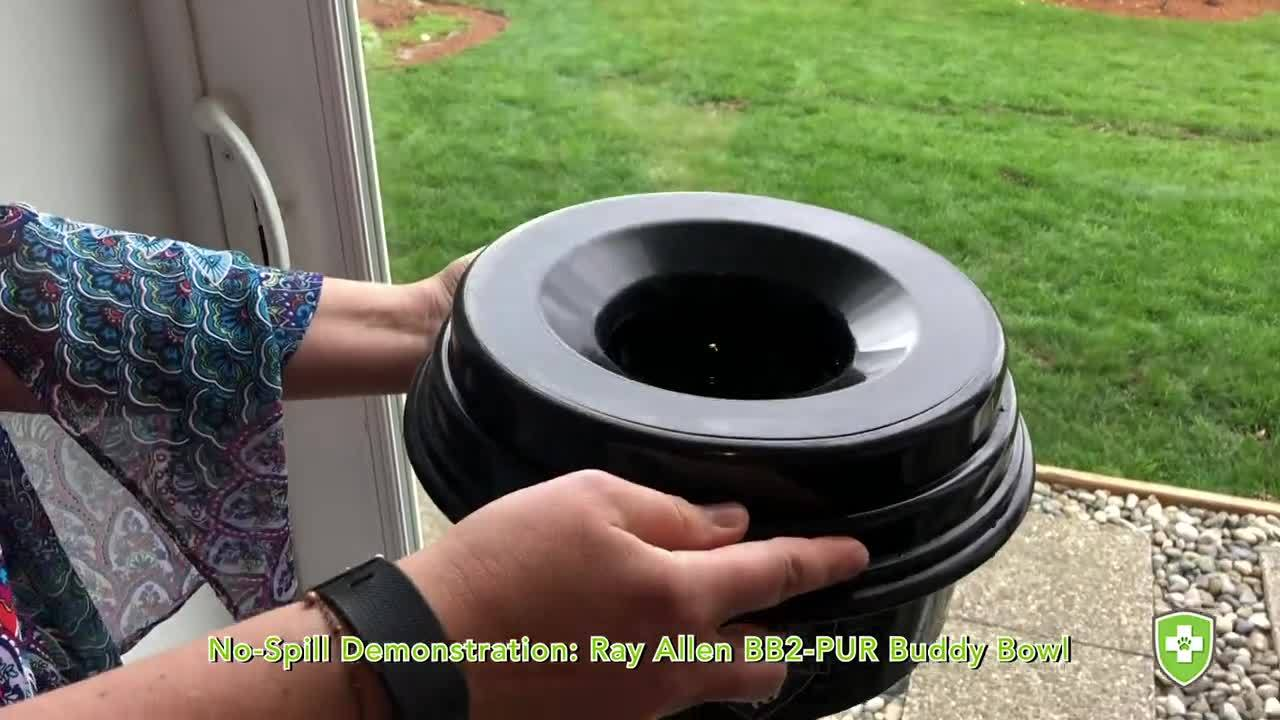 Ray Allen Buddy Bowl No-Spill Demo