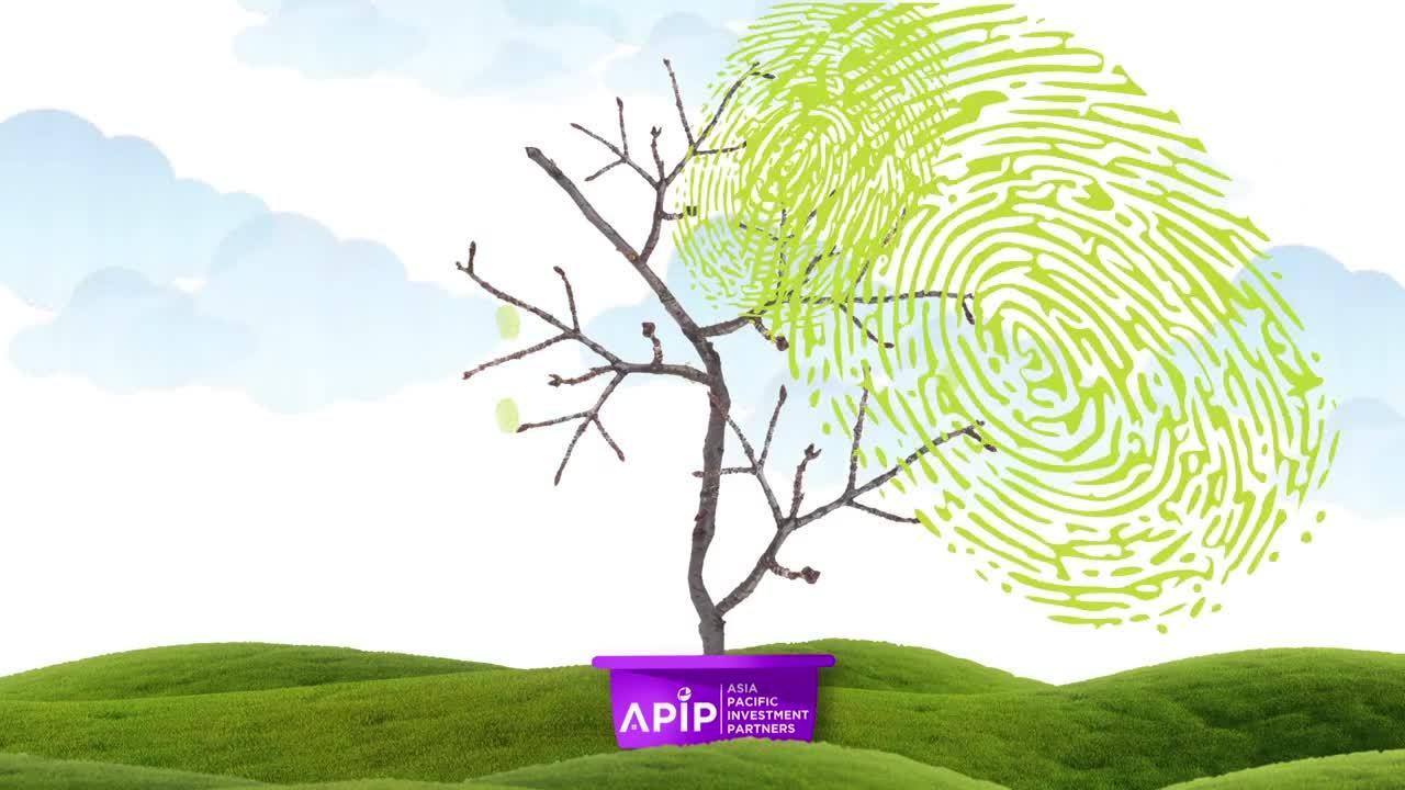 HR tree video