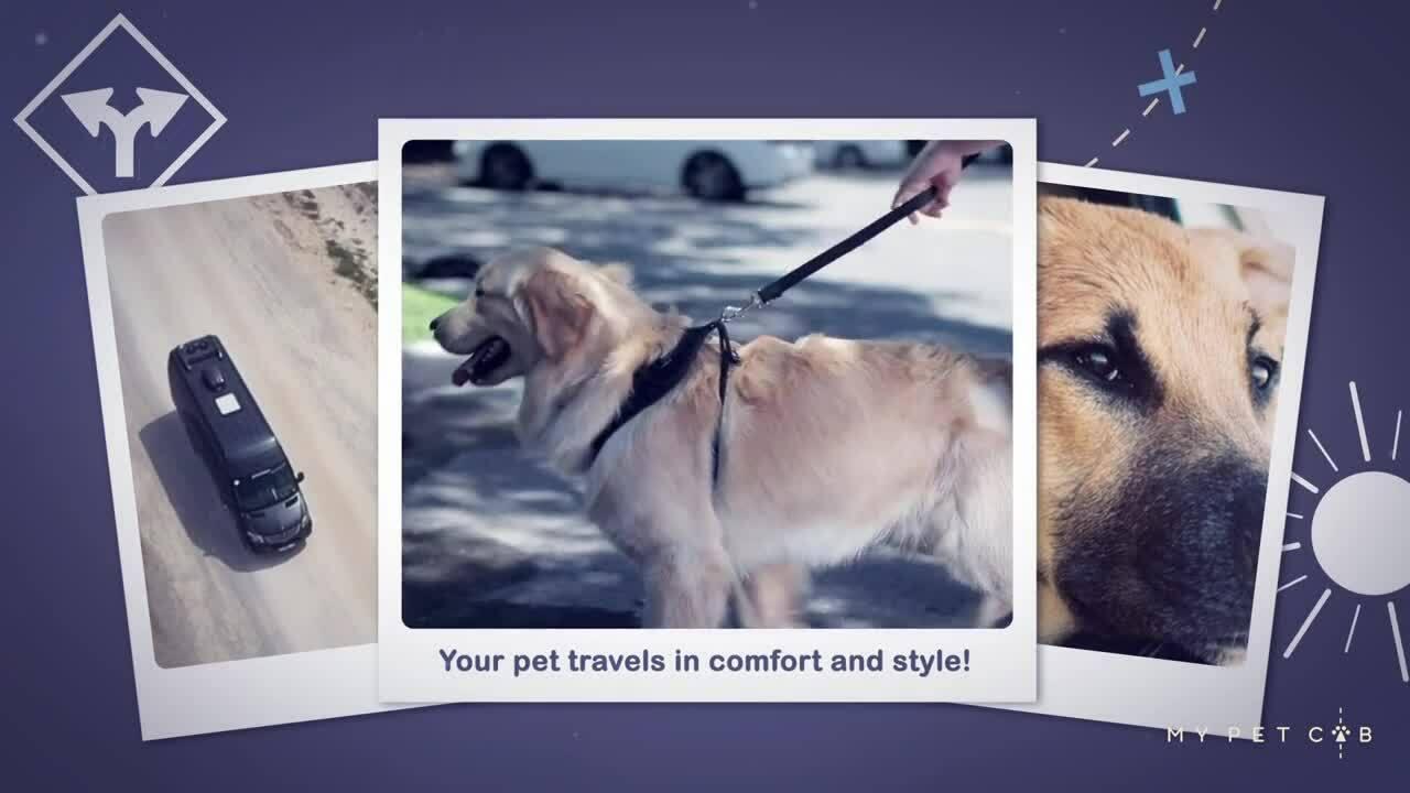 My Pet Cab _ Signature Video