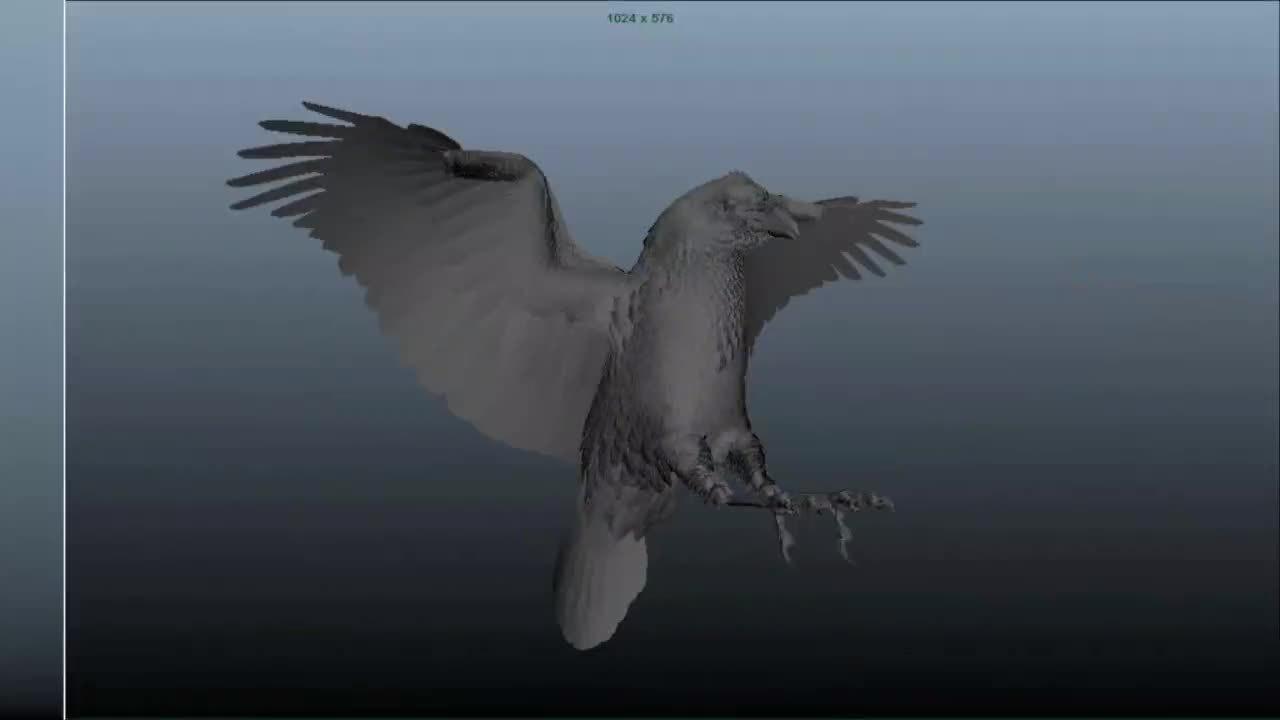 Crows.CS.Indiv copy-Smaller