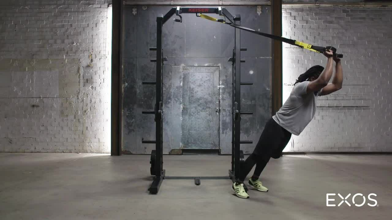 Triceps Extension (TRX)