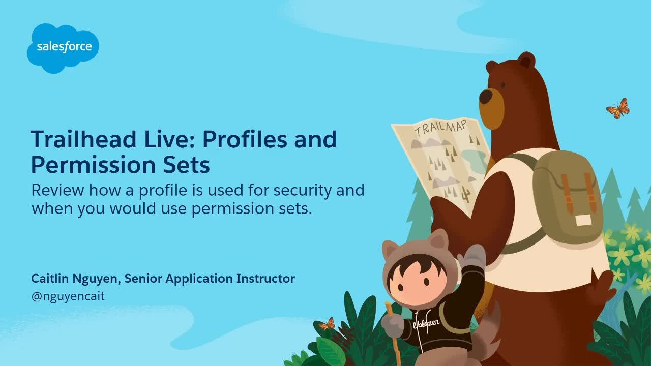 Video: Preparing for Your Admin Certification: Profiles and Permission Sets
