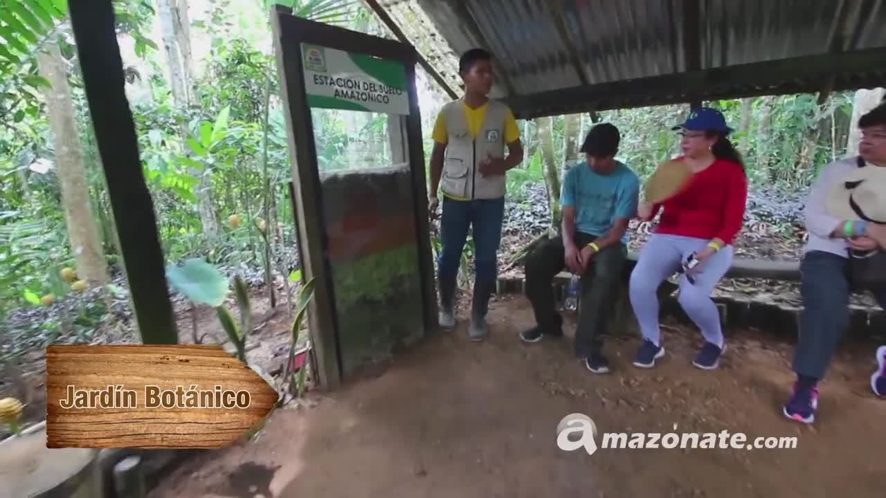 Full Day Mundo Amazonico