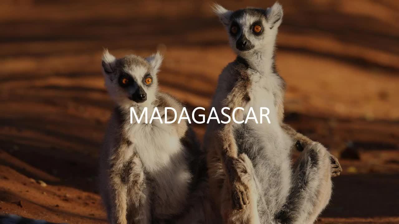 Discover Zegrahms African Safari Adventures