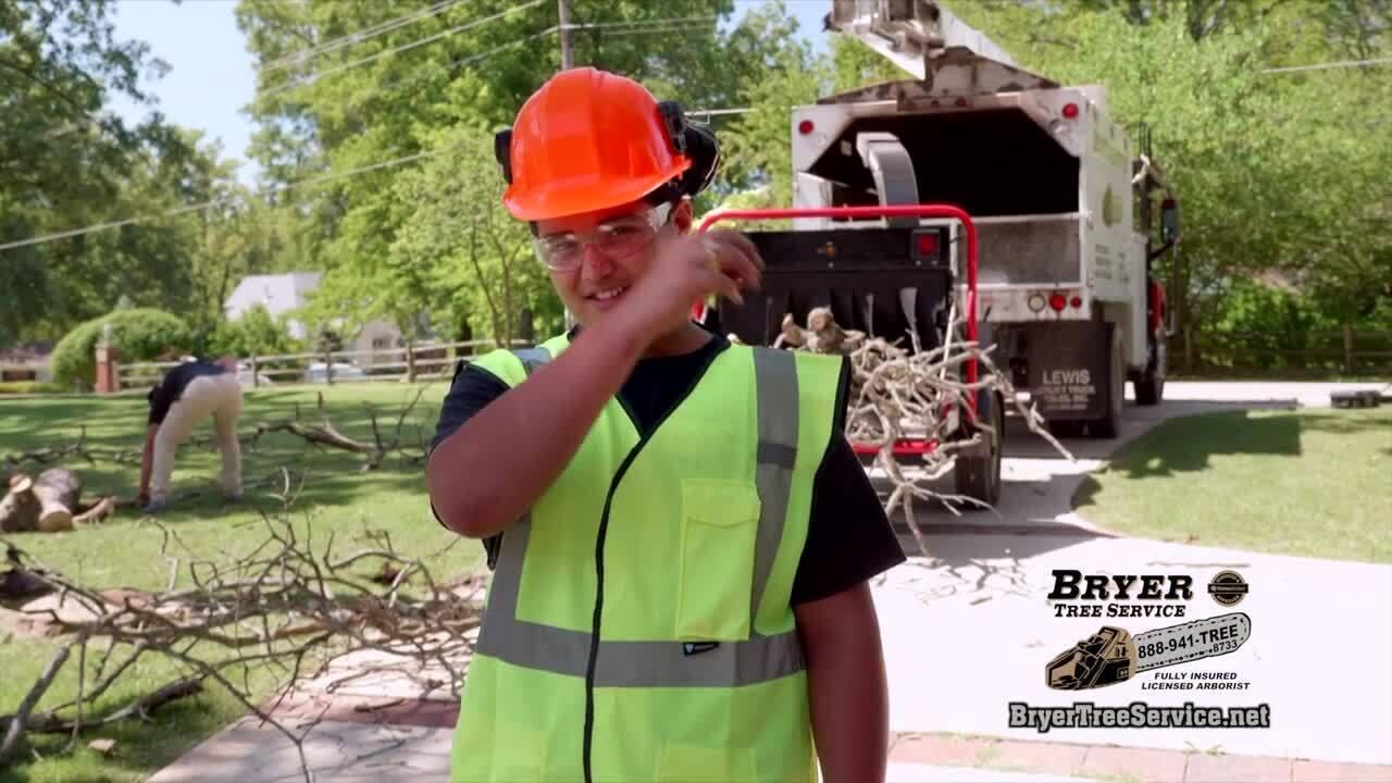 Bryer Tree Service Revised