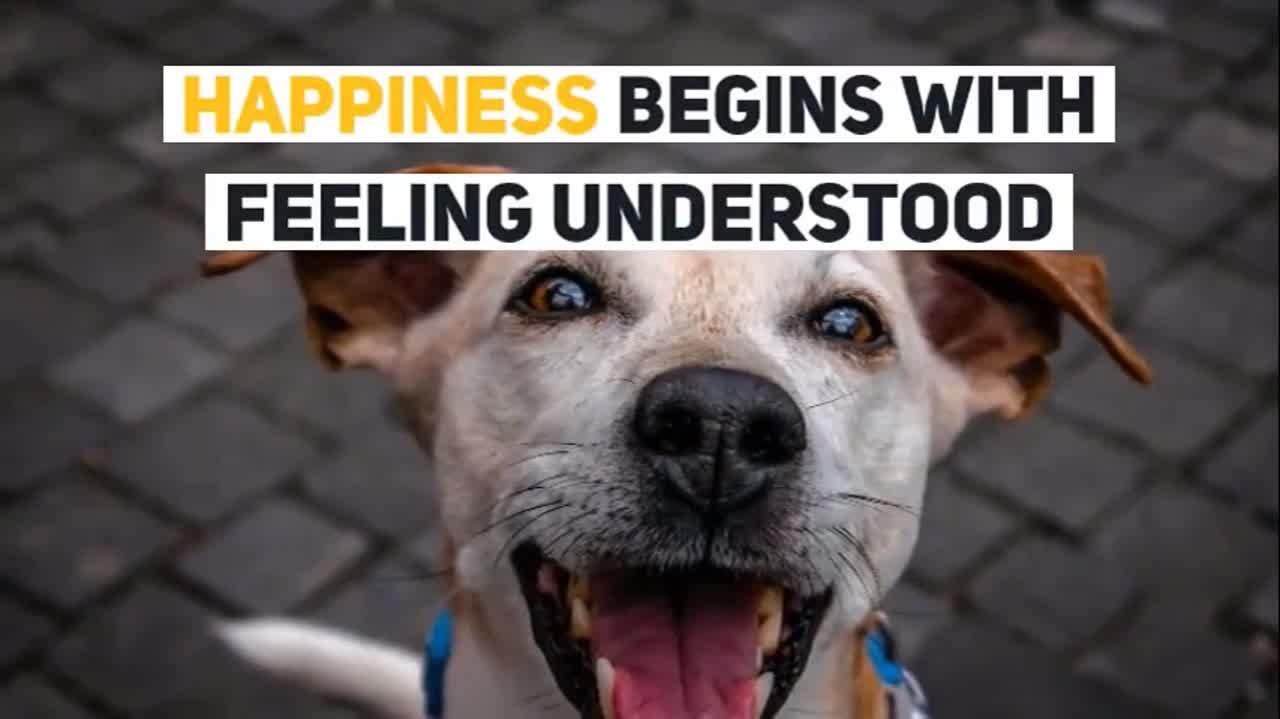 Happiness short video