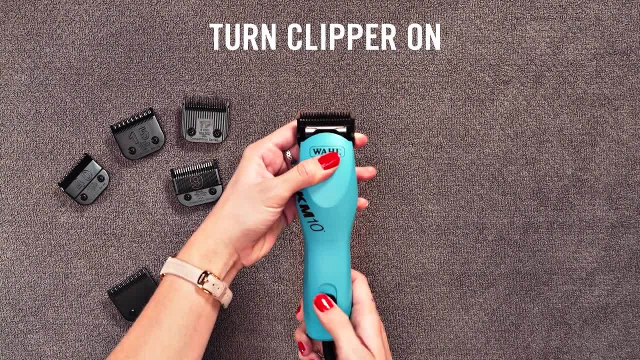 WAHL How to Use a Wahl Detachable Blade-1