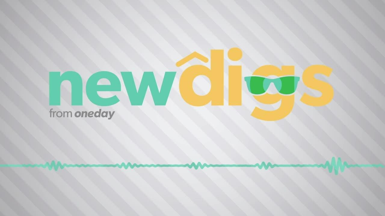 ONEDAY_NewDigs_Criticalmention