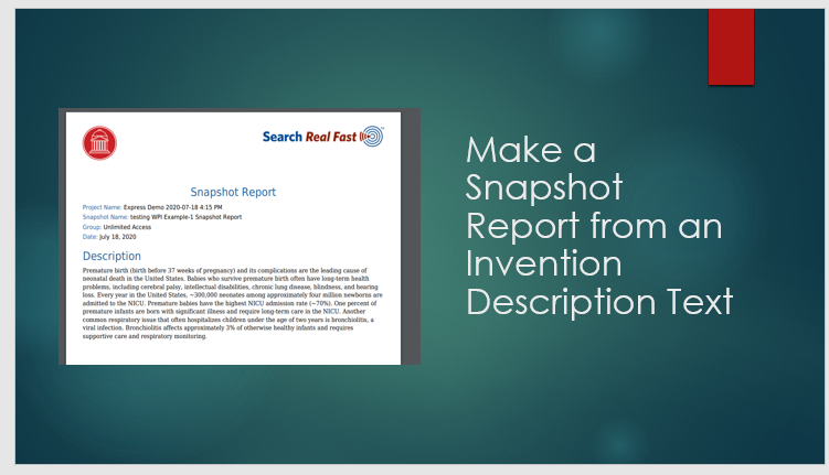 Make a Snapshot Report from an Invention Descripton Document